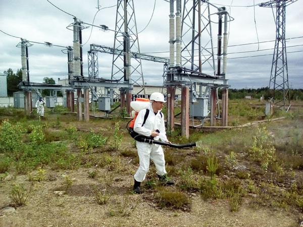 Гербицидная обработка ЛЭП в Грозном